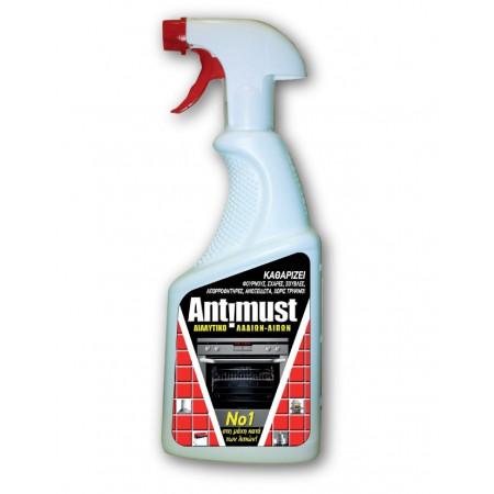 Holchem Antisalt 710ml - Καθαριστικό Αλάτων